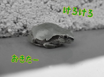 150419_1.jpg