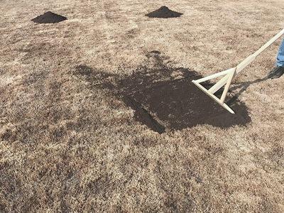 芝の目土入れ